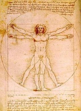 historia-da-anatomia-anatomia-